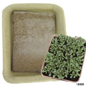 野菜たね 資材 ピートバンFH-180 1袋(1個) / 種 タネ|kokkaen