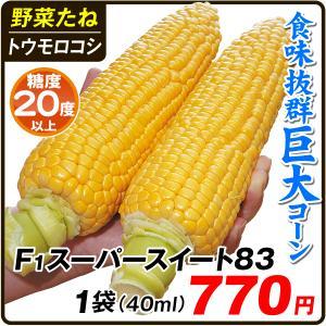 野菜たね トウモロコシ F1スーパースイート83 1袋(40ml) / 種 タネ
