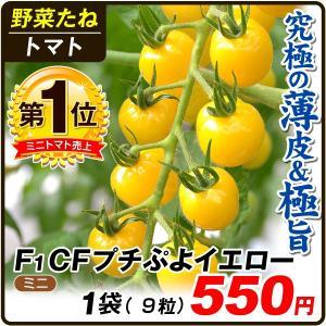 野菜たね トマト F1 CFプチぷよイエロー 1袋(10粒) / 種 タネ kokkaen