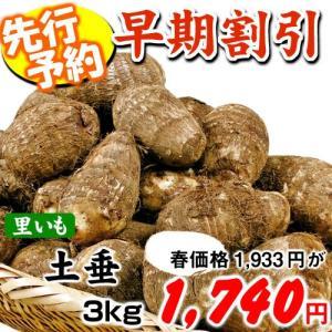 【早期予約】里いも種芋 土垂 3kg