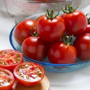 野菜たね タキイ交配 トマト フルティカ 1袋(100粒)|kokkaen