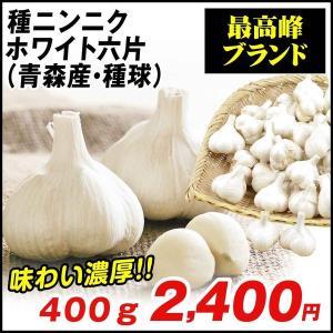ニンニク 種球 福地ホワイト六片 500g / にんにく 種ニンニク 大蒜 たね タネ 球根 国産 ガーリック