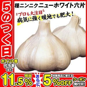 ニンニク種球 ニューホワイト六片 1kg