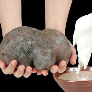山いも種芋 つくねいも むさし丸 1kg / やまいも ヤマイモ たね芋 たねいも