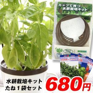 送料無料 野菜たね資材 水耕栽培キット 1組 パクチー ミニトマト バジル|kokkaen