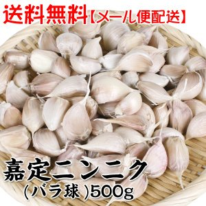 【メール便配送】送料無料 ニンニク種球 嘉定ニンニク(バラ)(中国産) 500g