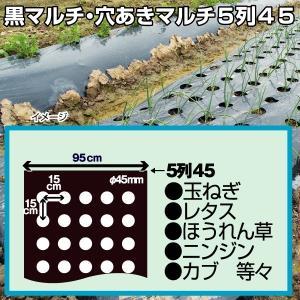 種まき栽培資材 黒穴あきマルチ 5列45 1枚 / 数量限定|kokkaen