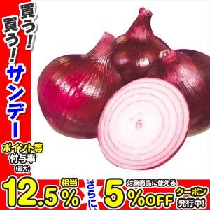 玉ねぎ苗 レッドムーン 200本 / 国華園|kokkaen
