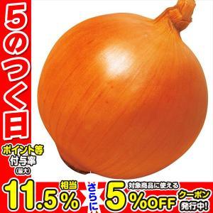 玉ねぎ苗 F1つり玉パーフェクト 300本 / 国華園|kokkaen