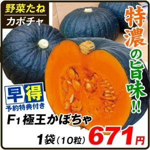 種 早得野菜たね カボチャ F1極王かぼちゃ 1袋(10粒) /送料グループ【早得たね】 kokkaen