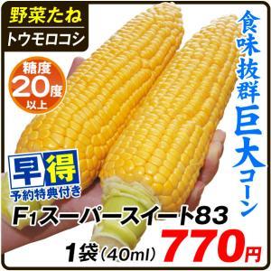 種 早得野菜たね トウモロコシ F1スーパースイート83 1袋(40ml) /送料グループ【早得たね】 kokkaen