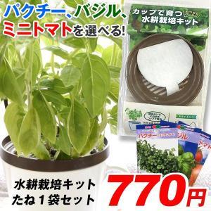野菜たね資材 水耕栽培キット 1組 パクチー ミニトマト バジル 送料無料
