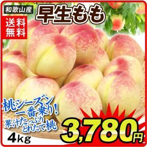 桃 和歌山産 早生桃(4kg)15〜22玉 ご家庭用 極早生 品種おまかせ もも ピーチ フルーツ 国華園|kokkaen