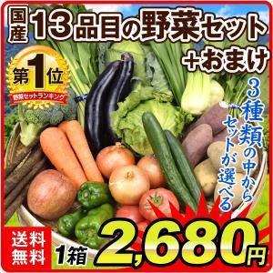 国産 新鮮 野菜セット(13品目) +おまけフルーツ 1品目 合計14品目 選べる3種類 厳選 SE...