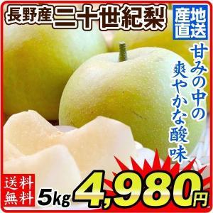 梨 長野産 二十世紀梨(5kg)ご家庭用 産地直送 にじゅっせいき なし 和梨 フルーツ くだもの 食品 国華園|kokkaen
