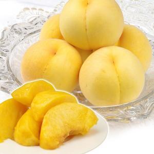 大特価 山形の桃・黄桃5kg 1箱 冷蔵便|kokkaen