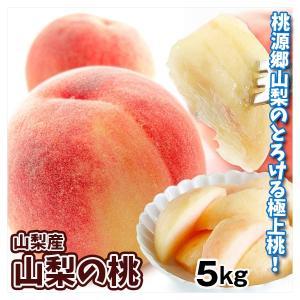 桃 山梨産 桃(5kg)ご家庭用 品種おまかせ もも ピーチ フルーツ 国華園|kokkaen