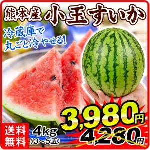 すいか 熊本産 小玉すいか 5kg 1組 3〜7玉 フルーツ 食品 国華園