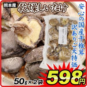 椎茸 熊本産 乾燥しいたけ(100g) 50g×2袋 訳あり 乾物 国華園|kokkaen