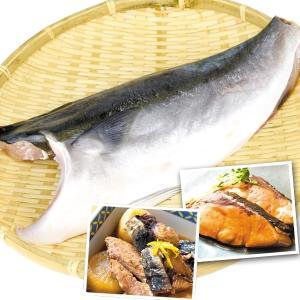 食品 はまちフィレ(半身) 1枚 冷凍便 国華園|kokkaen