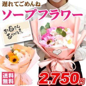 母の日 2017 送料無料 カーネーション 5号鉢と選べるス...