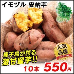 イモヅル(芋づる) 安納芋イモヅル 10本 / さつまいも苗...