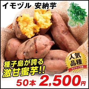 イモヅル(芋づる) 安納芋イモヅル 50本 / さつまいも苗...