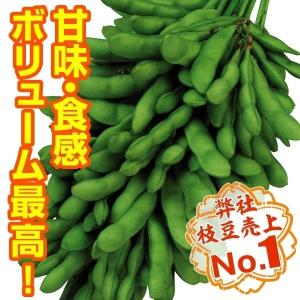 種 野菜たね エダマメ 恋姫PVP 1袋(30ml) / 野菜のたね 種 国華園