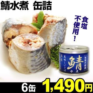 缶詰 美味しい鯖水煮  6缶 食品 kokkaen
