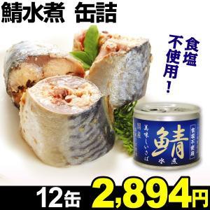 缶詰 美味しい鯖水煮 12缶 食品 kokkaen