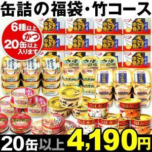 缶詰 缶詰の福袋・竹コース 1組 食品 kokkaen
