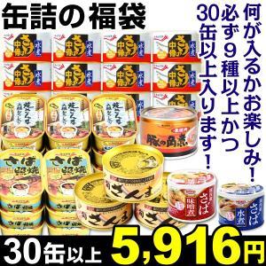 缶詰 缶詰の福袋 30缶1組 【必ず9種以上かつ30缶以上入ります】 食品 kokkaen