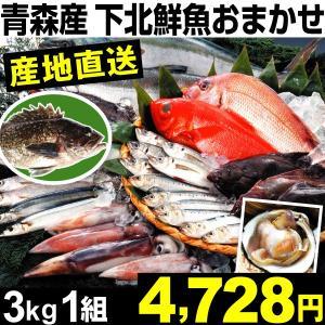 魚介 青森産 下北鮮魚おまかせセット 3kg1組 冷蔵 食品|kokkaen