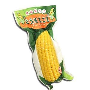 トウモロコシ 真空パック とうもろこし 5本 食品◆|kokkaen