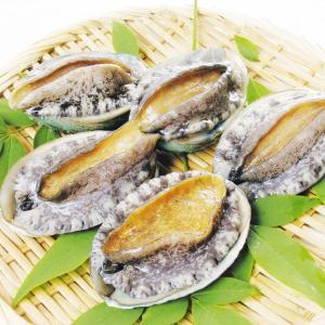 あわび 活・蝦夷あわび 4個1組 冷蔵便 食品|kokkaen
