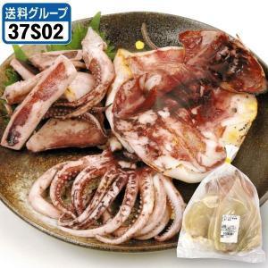 訳あり スルメイカ一夜干し 2袋 (1袋500g入り) 冷凍便 食品◎ グルメ|kokkaen