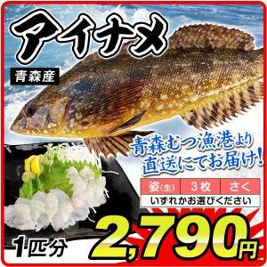 あいなめ 1匹分 青森産 あぶらめ 鮮魚 「姿」・「3枚おろし」・「さく」からお選びください 刺身 国華園|kokkaen