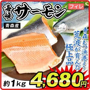 サーモン 海峡サーモン・フィレ 約1kg 青森産 鮭 鮮魚  フィレ 冷凍便 国華園|kokkaen