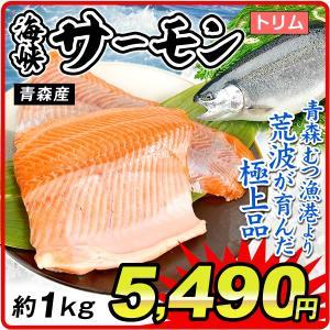 サーモン 海峡サーモン・トリム 約1kg 青森産 鮭 鮮魚  トリム 冷凍便 国華園|kokkaen