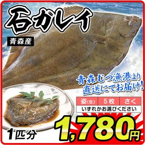 カレイ 石カレイ 1匹分 青森産 鰈 鮮魚 「姿」・「5枚おろし」・「さく」からお選びください 刺身 石かれい 国華園|kokkaen