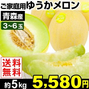 メロン 青森産 ご家庭用 ゆうかメロン 約5kg1組 送料無料 3〜6玉 冷蔵|kokkaen