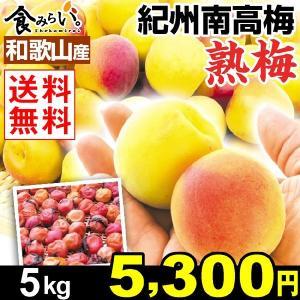生梅 和歌山産 紀州南高梅・熟梅 5kg1組 送料無料 梅干し 冷蔵便 kokkaen