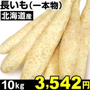 北海道産 長いも 一本物 10kg1箱