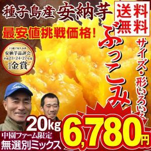 安納芋 種子島産 安納芋 訳ありミックス 20kg 送料無料 ぶっこみ企画 10kg×2箱  種子島産 ★究極のさつまいも 極甘蜜芋 中園ファームさん 最終特価|kokkaen