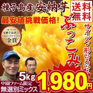 安納芋 種子島産 安納芋 訳ありミックス 5kg 送料無料 ぶっこみ企画 種子島産 ★究極のさつまいも 極甘蜜芋 中園ファームさん 最終特価|kokkaen