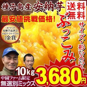安納芋 種子島産 安納芋 訳ありミックス 10kg1組 送料無料 ぶっこみ企画 種子島産 ★究極のさつまいも 極甘蜜芋 中園ファームさん 最終特価|kokkaen