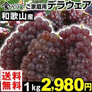 ぶどう ご家庭用 和歌山産 デラウェア 1kg 1箱 送料無料 種無しぶどう|kokkaen