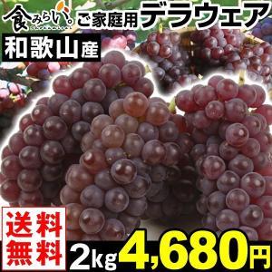 ぶどう ご家庭用 和歌山産デラウェア 2kg1組 送料無料 種無しぶどう|kokkaen