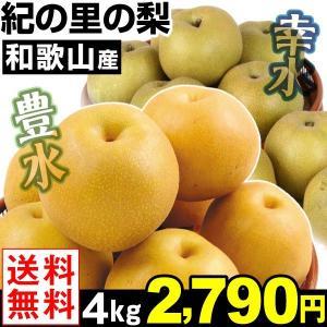 梨 和歌山産 紀の里の梨 豊水/幸水 各4kg 1箱 送料無料 和梨|kokkaen
