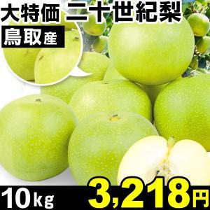 梨 大特価 鳥取産 二十世紀梨 10kg 1箱|kokkaen